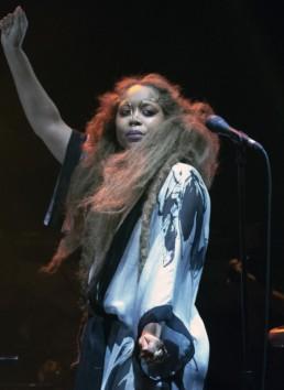 Erykah Badu Concert Photo
