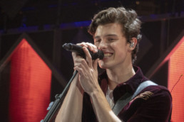 Shawn Mendes Concert Photo