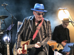 Elvis Costello Concert Photo